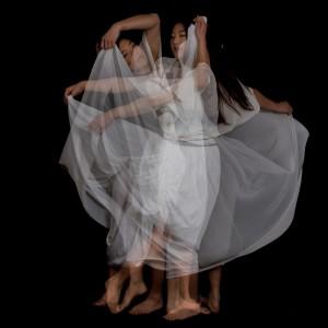 Danse7voiles